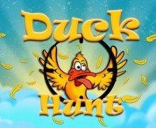 لعبة اطلاق النار على الطيور DuckHunt