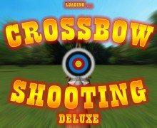 تحميل لعبة الرماية بالقوس Crossbow Shooting deluxe