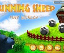 تحميل لعبة الخرفان مجانا Running Sheep Tiny Worlds Free