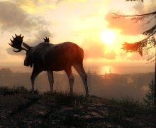 تحميل لعبة صيد الحيوانات في الغابة للكمبيوتر theHunter
