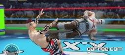 تحميل لعبة القتال الخطير للاندرويد Wrestling Fight Revolution